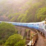 Podróż pociągiem – jak przewozić rowery lub zwierzęta domowe?
